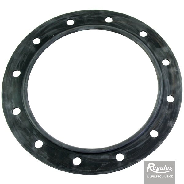 Photo: Flange gasket for PS2F, PSWF tanks