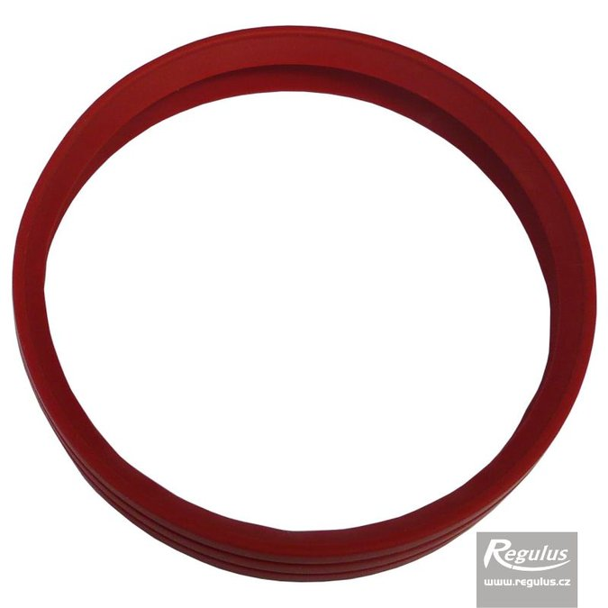 Photo: 80 mm Gasket, 2 lips, red