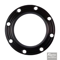 Picture: Flange Gasket for RxDC 300 tanks