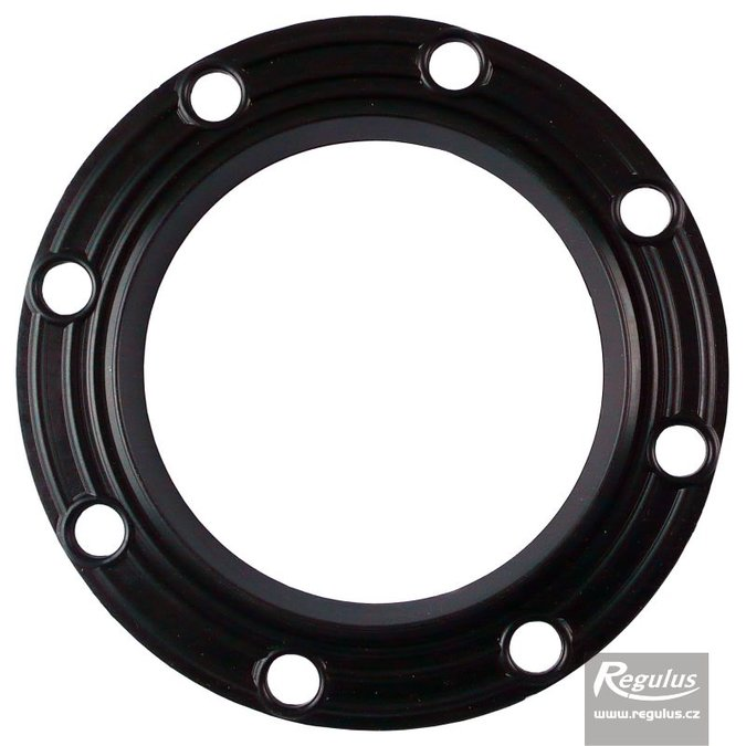 Photo: Flange Gasket for RxDC 300 tanks