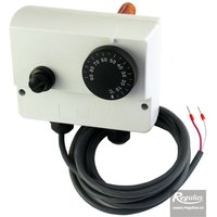 Picture: Double encased adjustable immersion thermostat, 0-90/100°C, with Pt1000 sensor